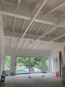 Das sichtbare Dachholz im Anbau wurde weiß lasiert.